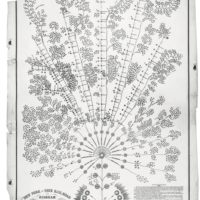 1855 org chart NY Erie RR